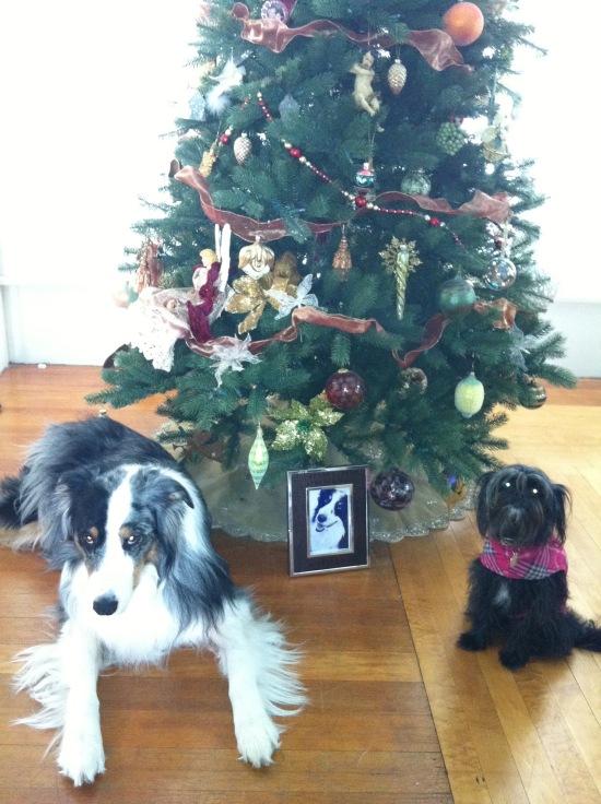 First Christmas Without Winnie HeyGirlfriend.Net