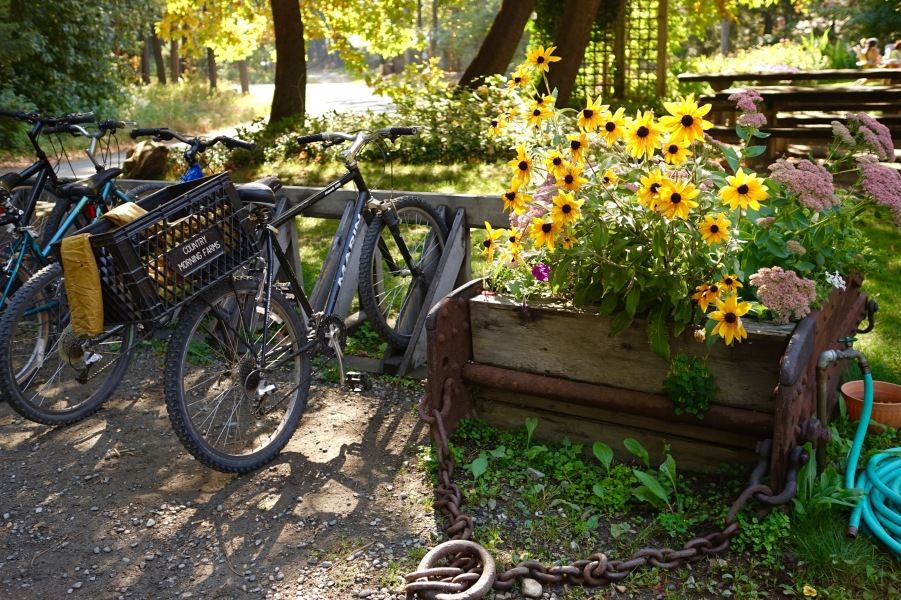 Stehekin bikes and planter