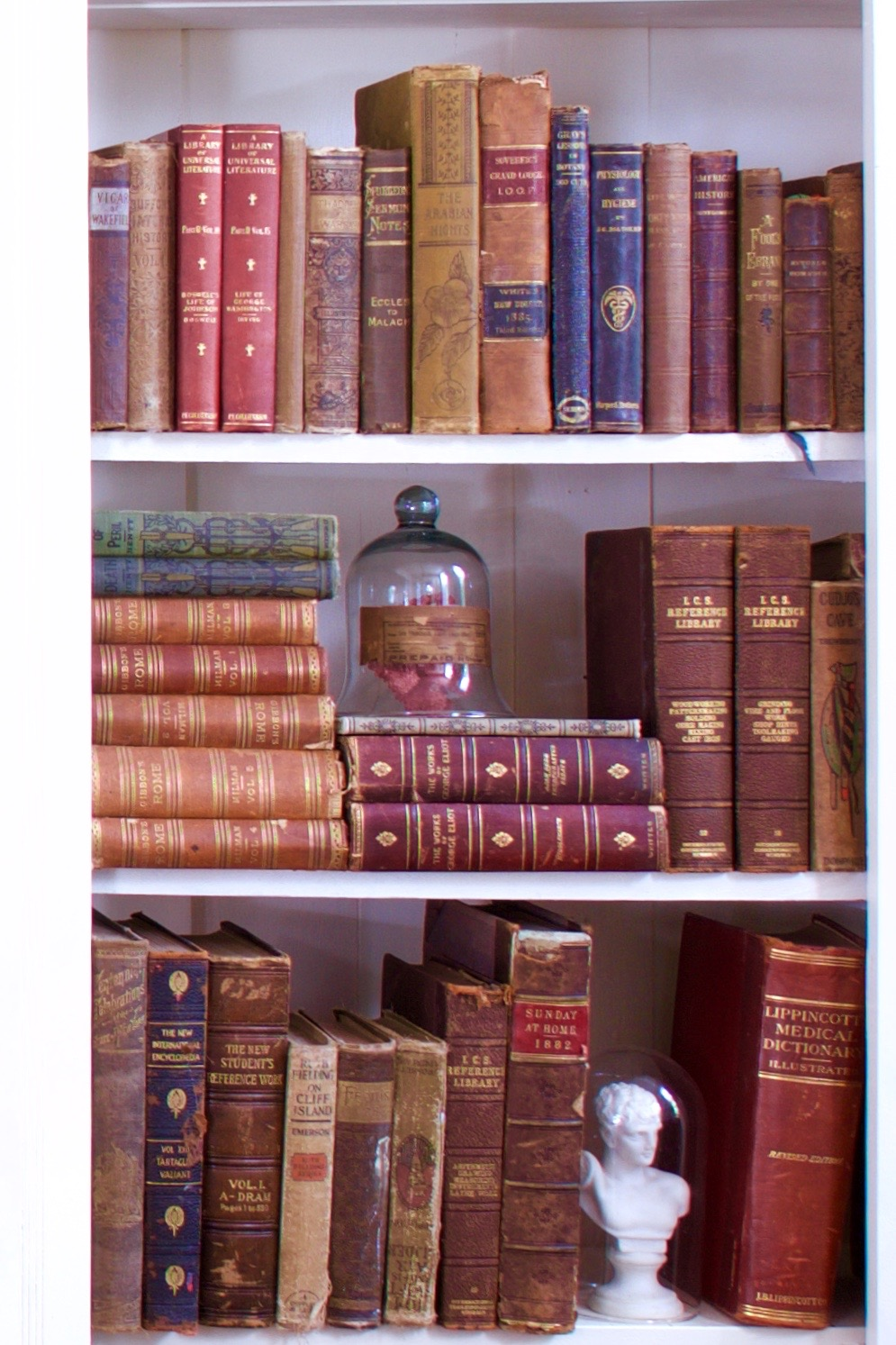 Cloches add interest and charm to shelves in this library