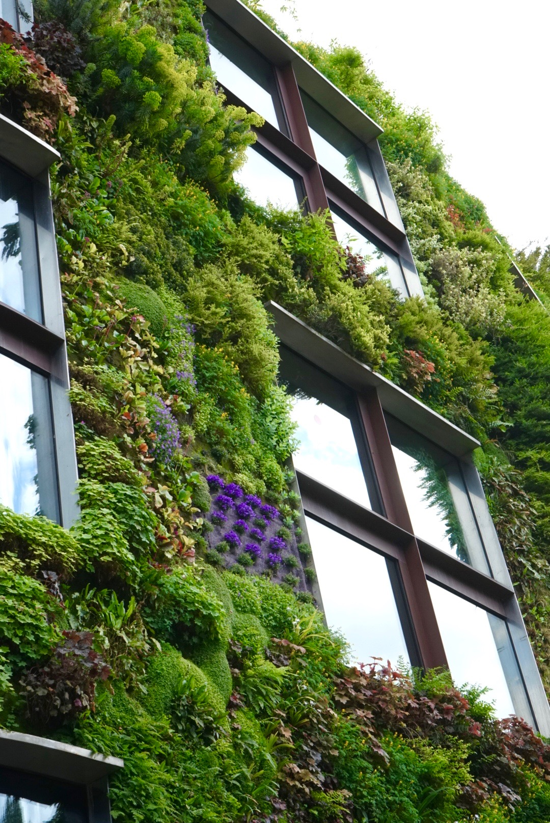 Musee du Quai Branly, Paris ~ Living Wall