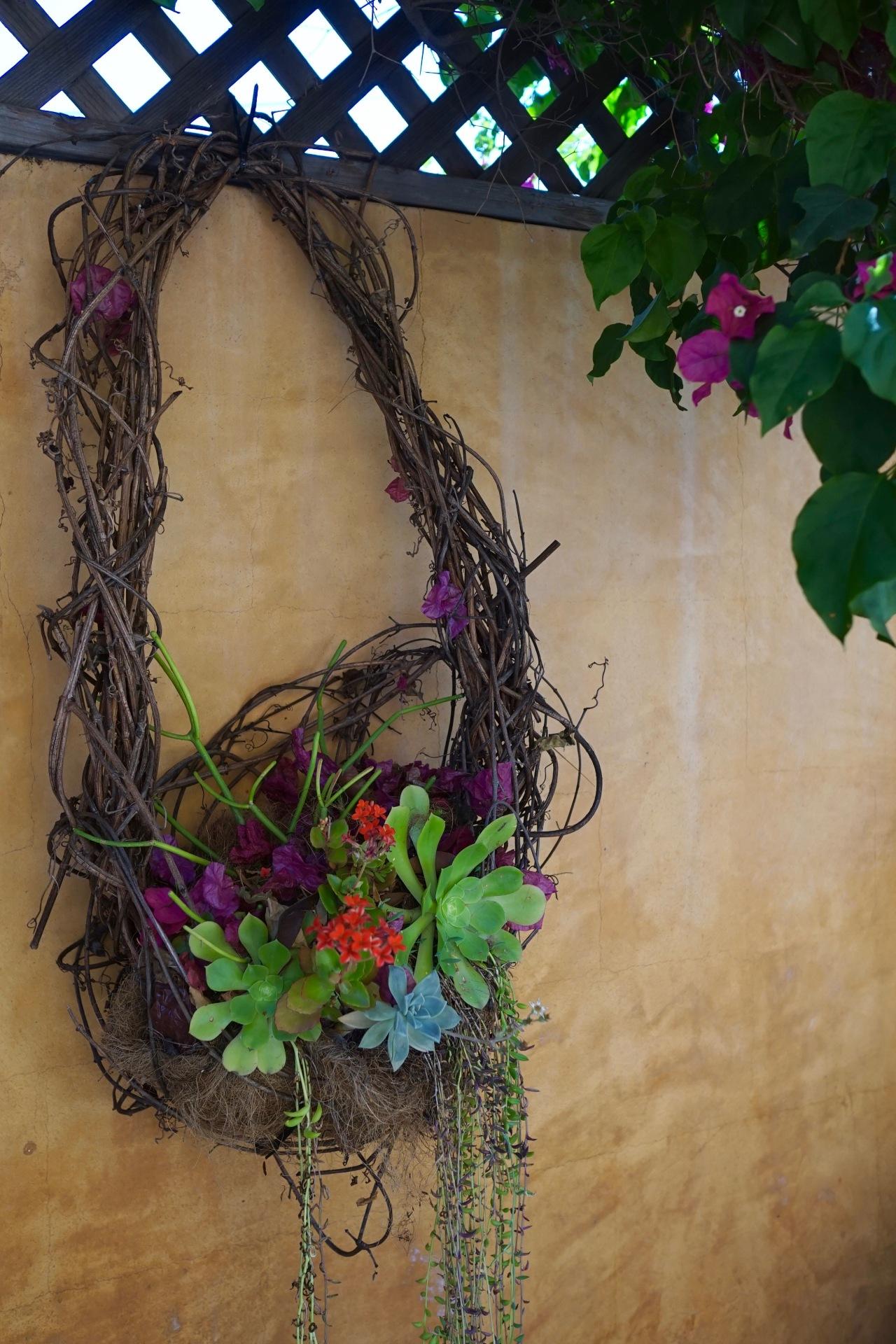 Drought Tolerant Plants ~ Southern California Garden Tour