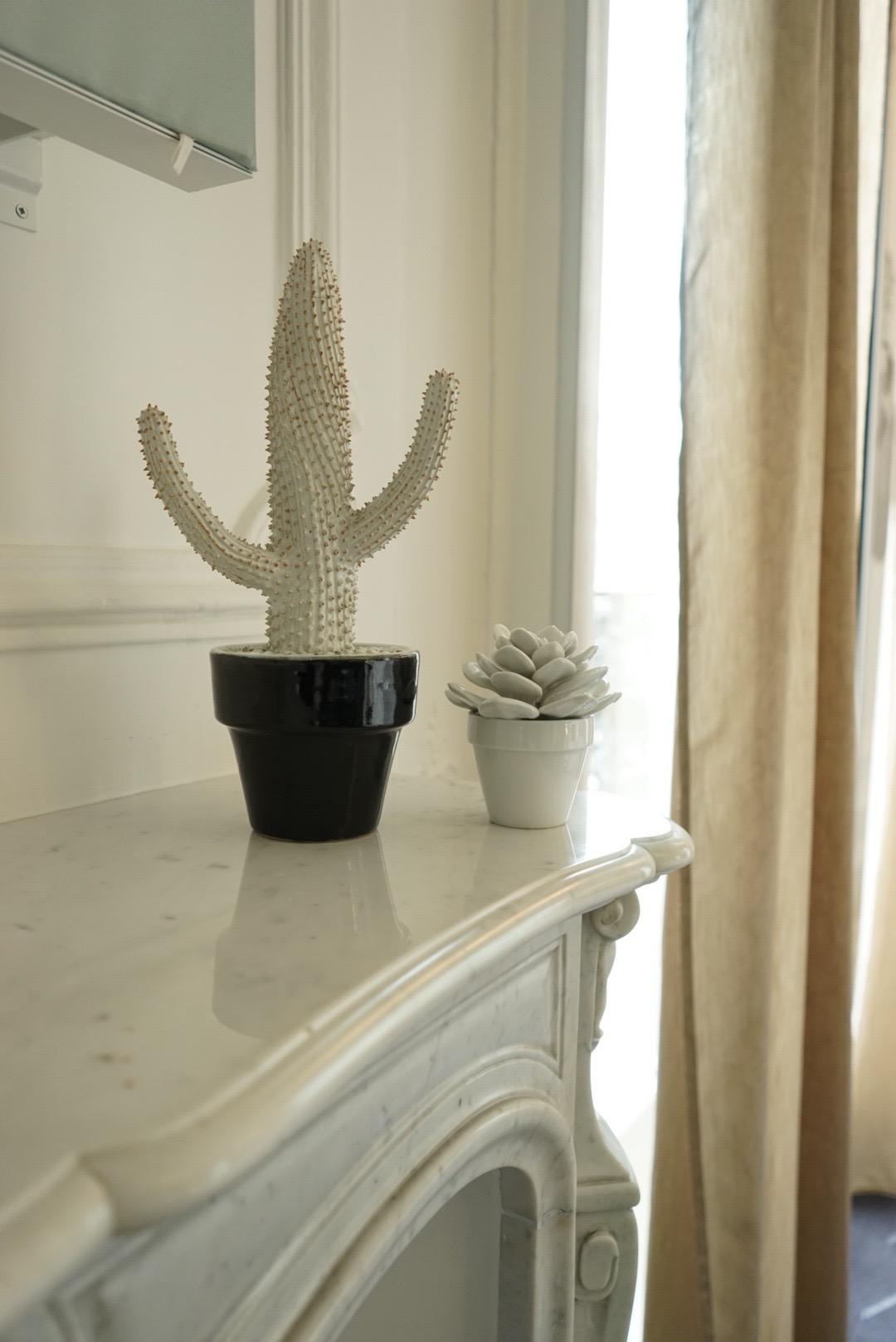 HeyGirlfriend.Net ~ Happy Cacti