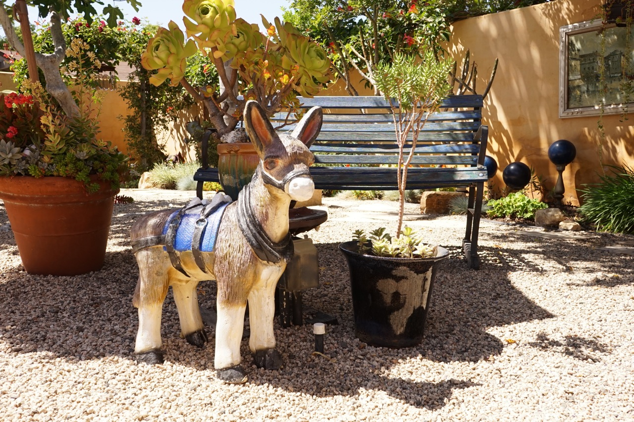 Quirky Southern California Garden Tour
