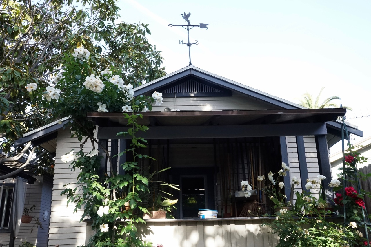 Potting Shed and weathervane