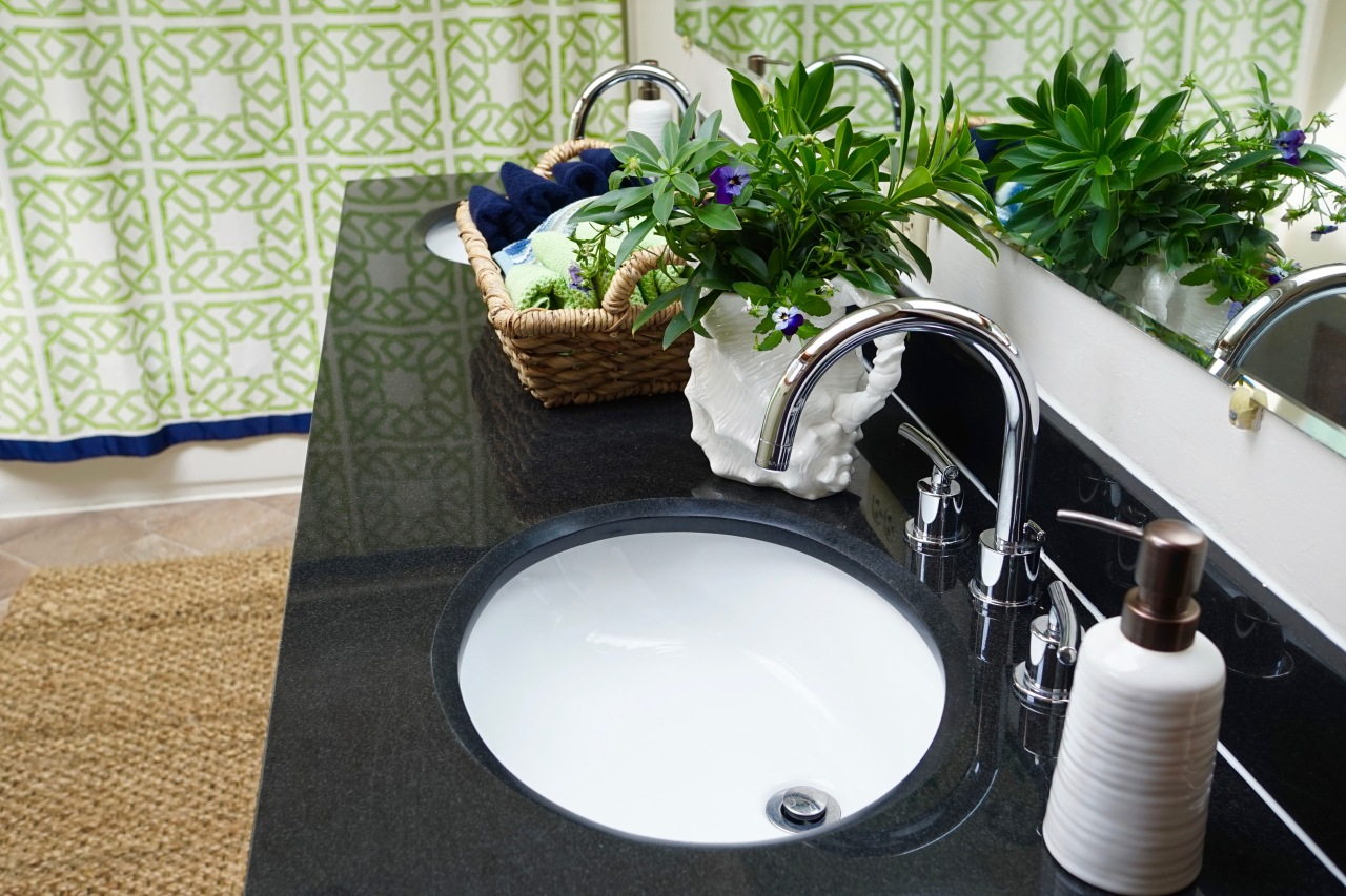 Rental-House-Bathroom-Countertop-Decorated
