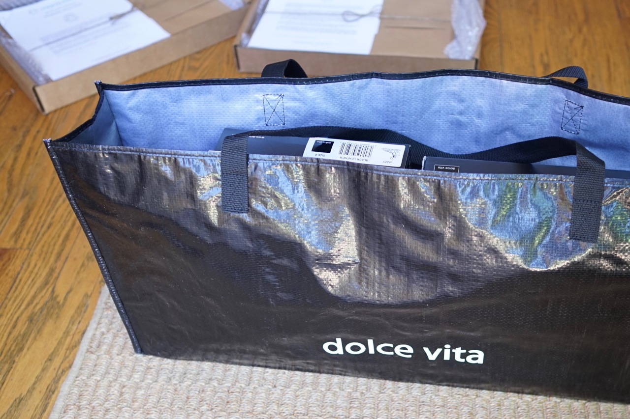 Bag-of-Dolce-Vita-Shoes