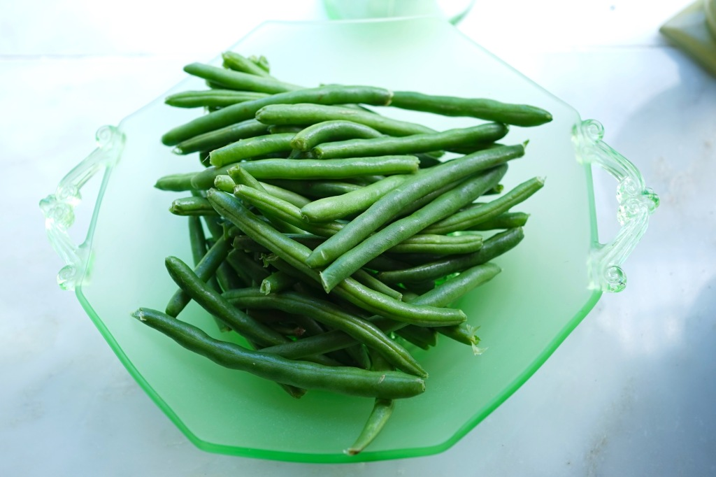 Fresh-organic-green-beens